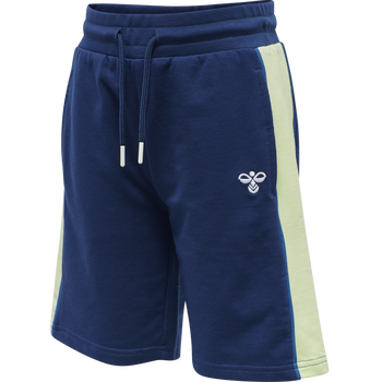 hmlDEFENDER SHORTS, ESTATE BLUE, packshot